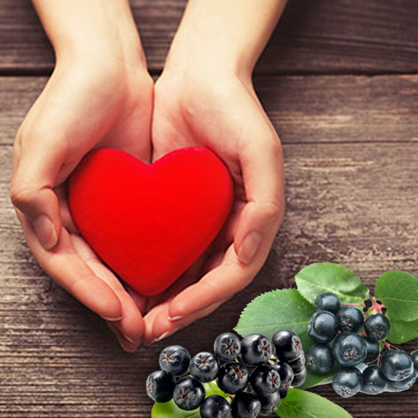 Aronia Berry for the heart